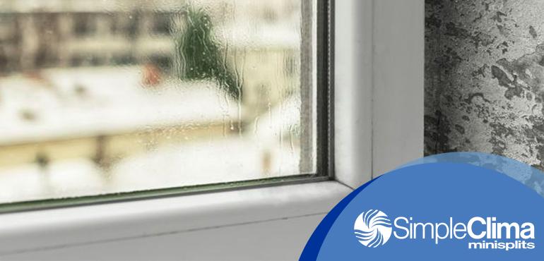¿Por qué la humedad en casa u oficina puede llegar a afectar tu salud?